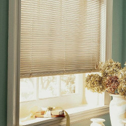 High-Gloss Vinyl Privacy Blinds